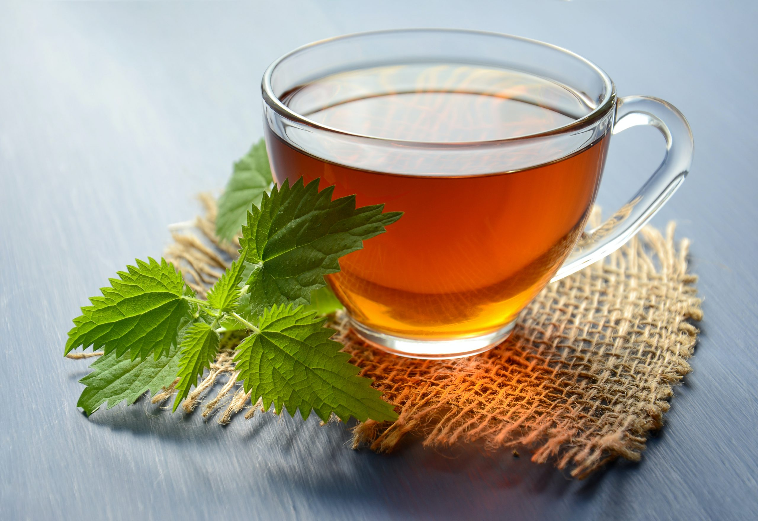 Top 9 Types of Organic Tea & Their Benefits